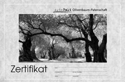 Olivenbaum Patenschaft Zertifikat